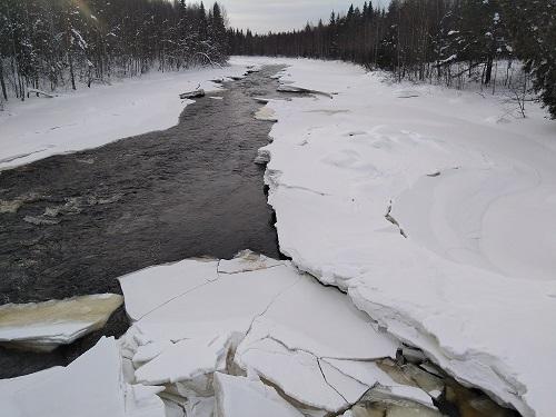 Randonnées autour de Rovaniei en hiver