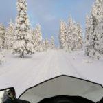 guide parlant Français en Laponie