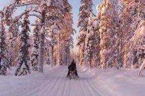 Snowmobile safari rovaniemi
