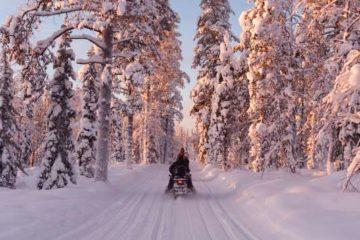 safaris motoneige à Rovaniemi